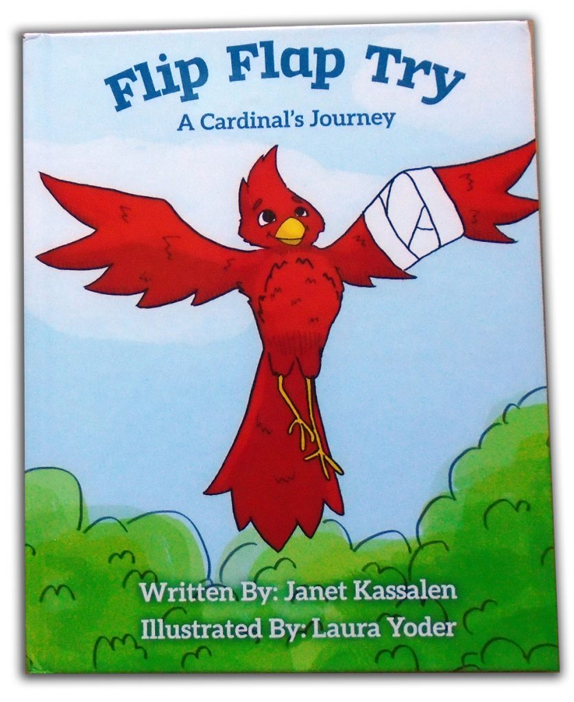 Flip, Flap, Try cover