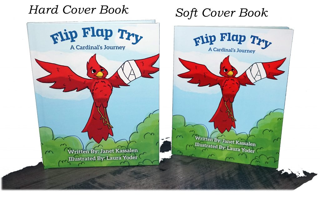 Flip Flap Try by Janet Kassalen Hard and Soft Cover Books